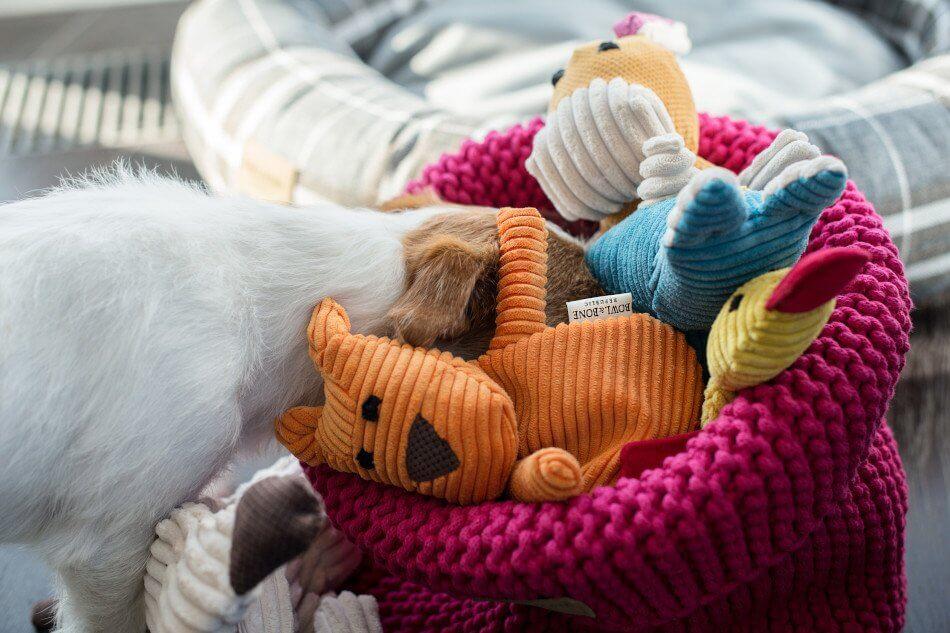 basket for dog toys cotton pink toy felix duckie roybax bowlandbonerepublic ls1sa