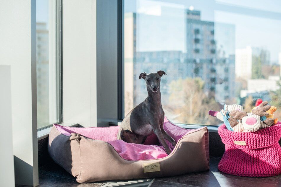 dog bed classic pinkcbasket for toys cotton pink toy toffi bowlandbonerepublic ls1sa