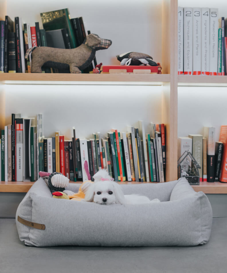 dog bed loft grey toy rex bax duckie bowl and bone republic ls2sa