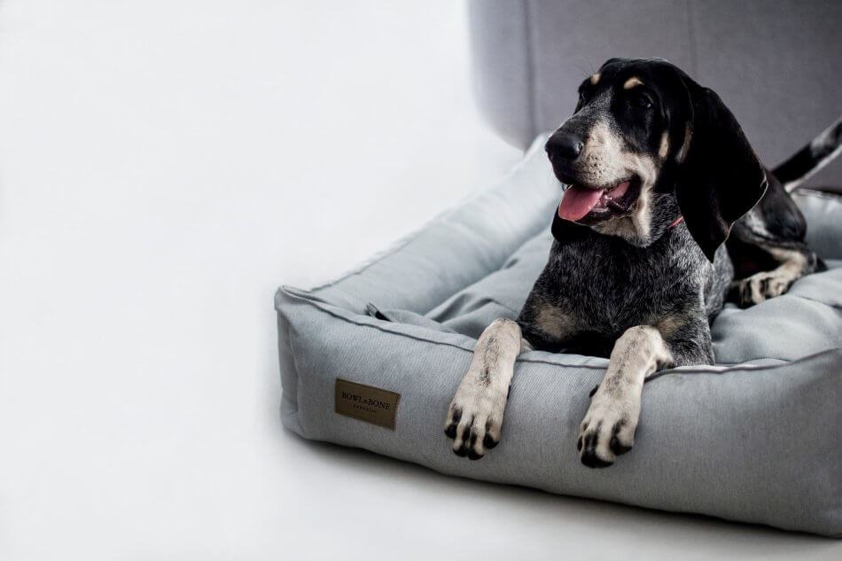 dog bed urban grey bowl and bone republic ls1sa