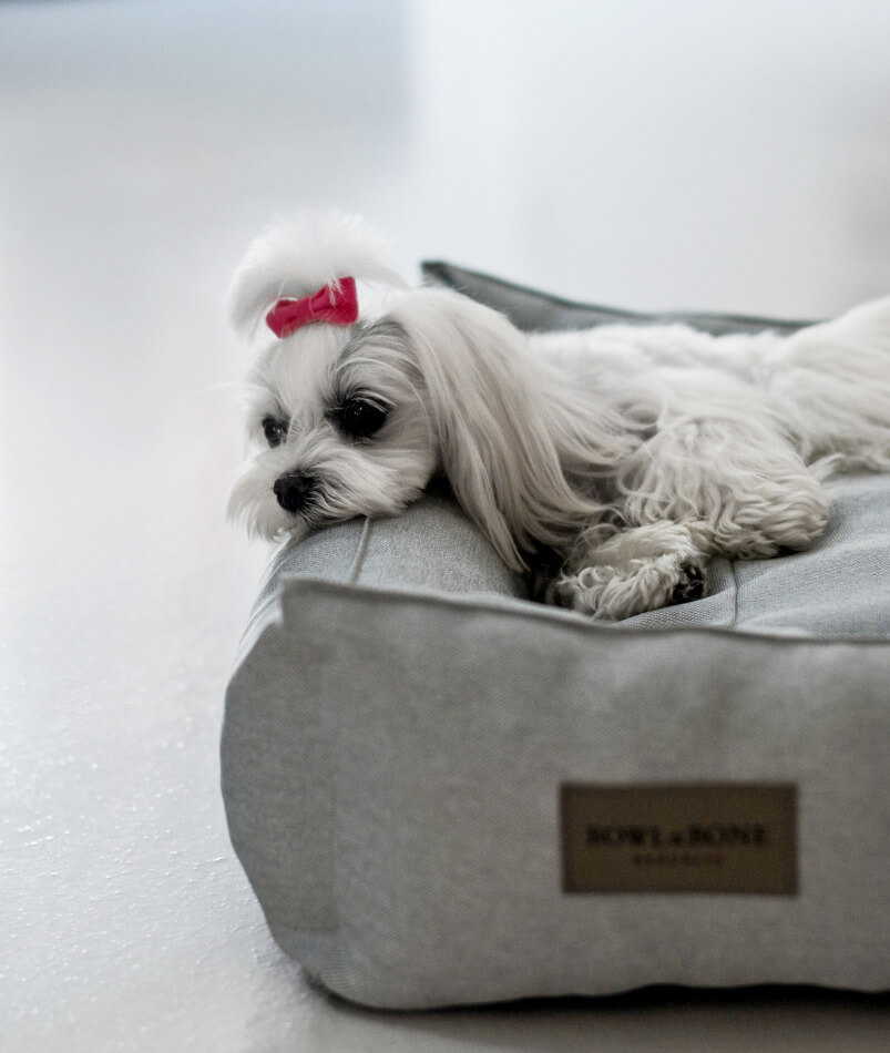 dog bed urban grey bowl and bone republic ls2sa