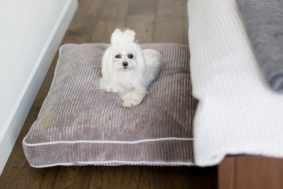 dog cushion bed deco silver grey bowlandbonerepublic ls1sa