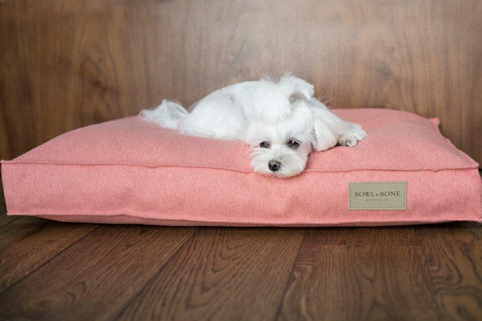 dog cushion bed loft coral bowlandbonerepublic ls1sa