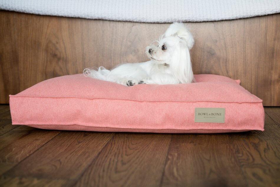 dog cushion bed loft coral bowl and bone republic ls2sa