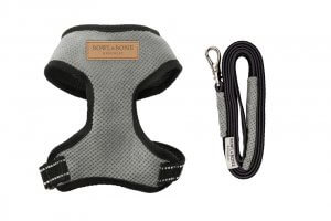 dog harness lead candy grey bowl and bone republic ps1sa