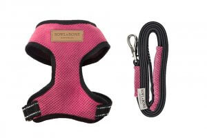 dog harness lead candy pink bowl and bone republic ps1sa