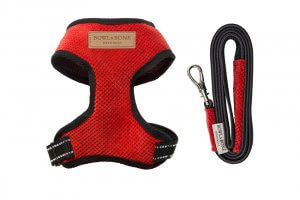 dog harness lead candy red bowl and bone republic ps1sa