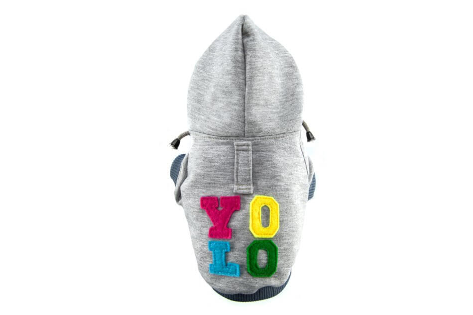 dog hoodie yolo grey bowl and bone republic ps1sa