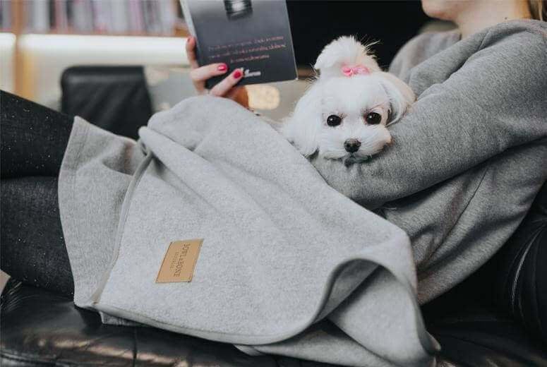 dog blanket zen grey bowl and bone republic ls12a blog
