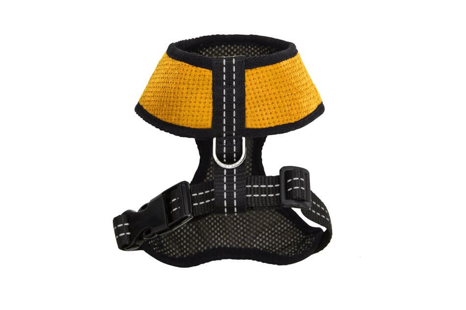 dog harness candy yellow bowl and bone republic ps2sa