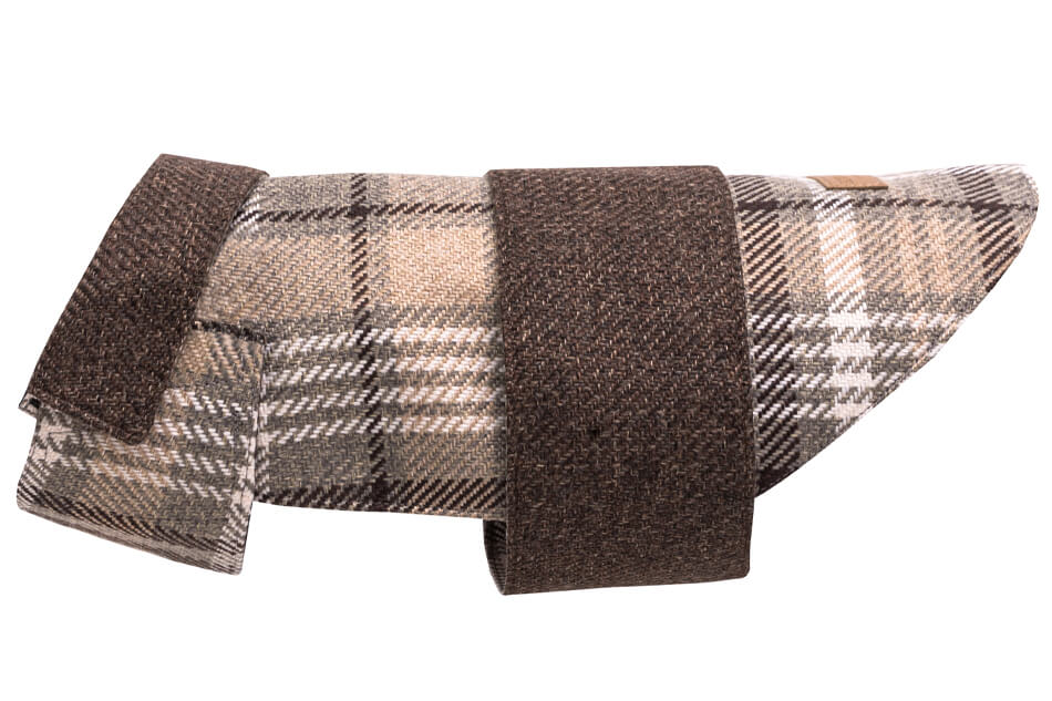 dog coat leaf brown beige bowlandbonerepublic ps2sa