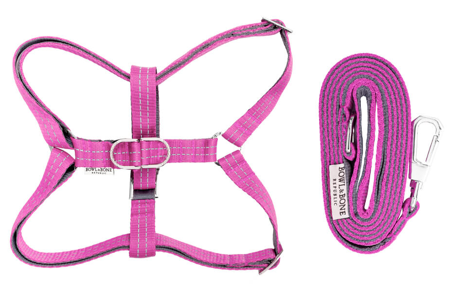 dog harness and lead active pink bowlandbonerepublic ps1sa