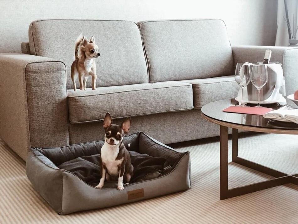 dog bed classic grey bowlandbonerepublic ls1sa