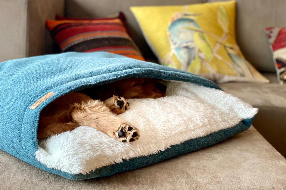 dog sleeping bag bliss green bowlandbonerepublic ls4sa