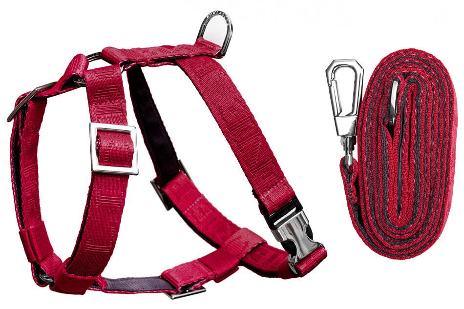 dog harness lead set guard bloom red bowlandbonerepublic ps1sa